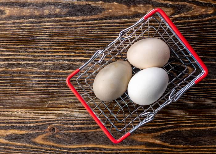 Ferme Laute P&V - Vente d'œufs fermiers à Braine-le-Comte